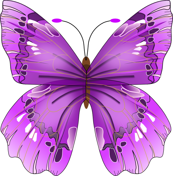 Worm clipart butterfly. Free graphics of butterflies