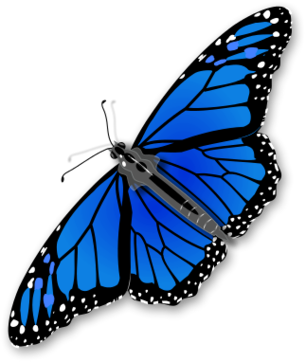 Clipart butterfly realistic. Monarch large
