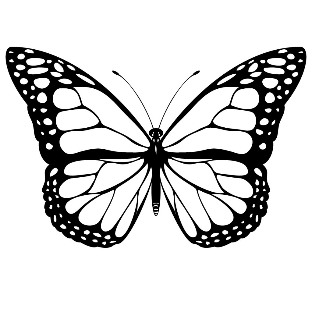 Free download clip art. Clipart butterfly realistic
