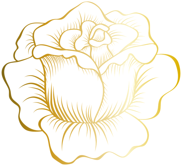 Clipart roses lace. Golden rose png clip