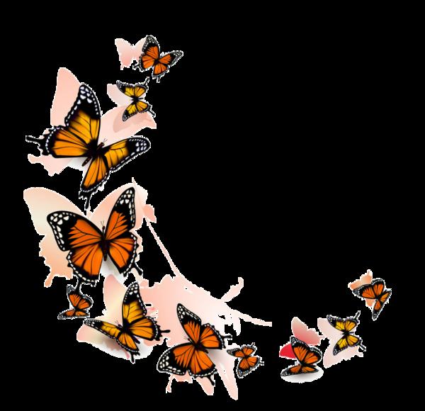 Clipart butterfly scrapbook. Butterflies pinterest scrapbooking