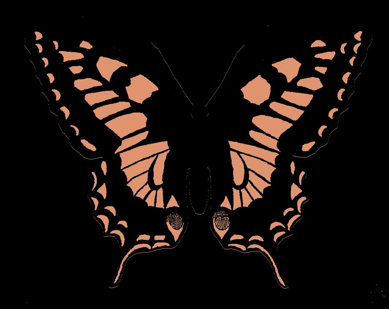 clipart butterfly scrapbook