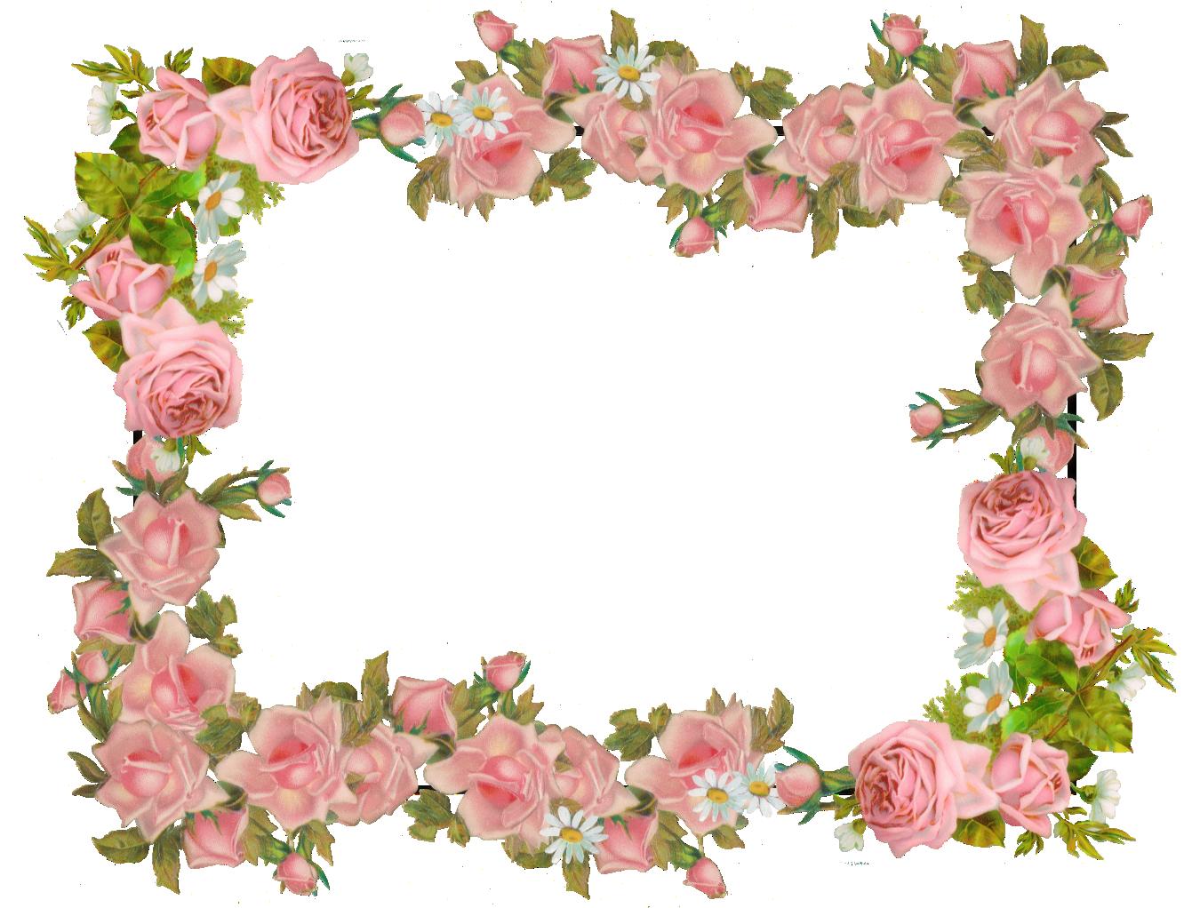 Succulent clipart scrapbooking supply. Free digital vintage rose