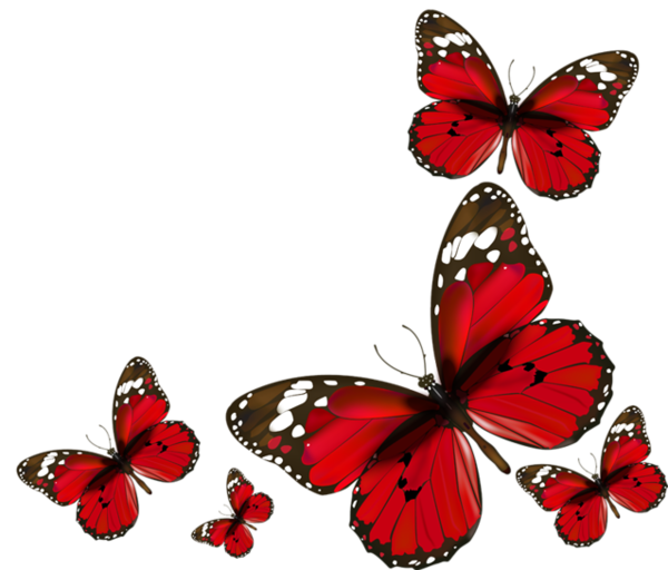 Papillons red butterflies png. Clipart butterfly shape