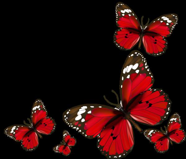 Hunter clipart butterfly. Papillons red butterflies png