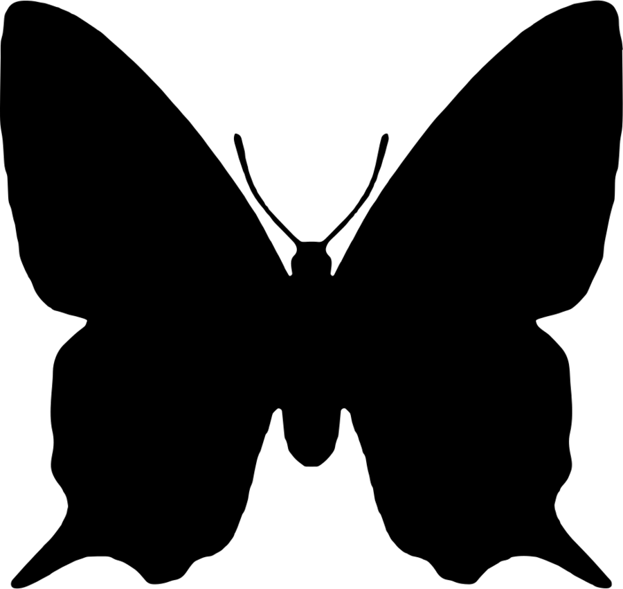 Clipart butterfly shape. Black and white animal