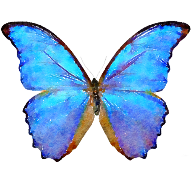 Blue watercolor and psd. Butterfly png images