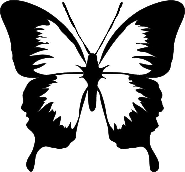 Vines clipart butterfly. Kelebek desen izimleri denenecek