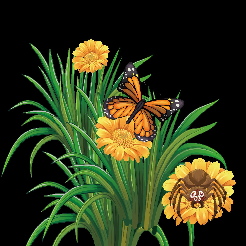 Monarch butterfly flower vector. Floral clipart summer