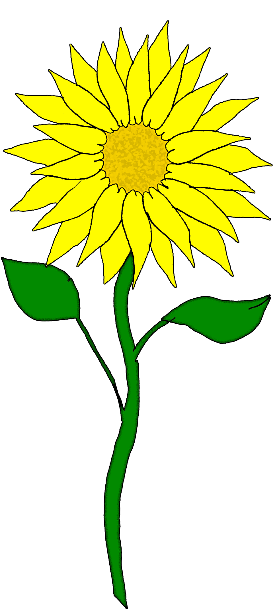 Free flower flowers pinterest. Harvest clipart sunflower