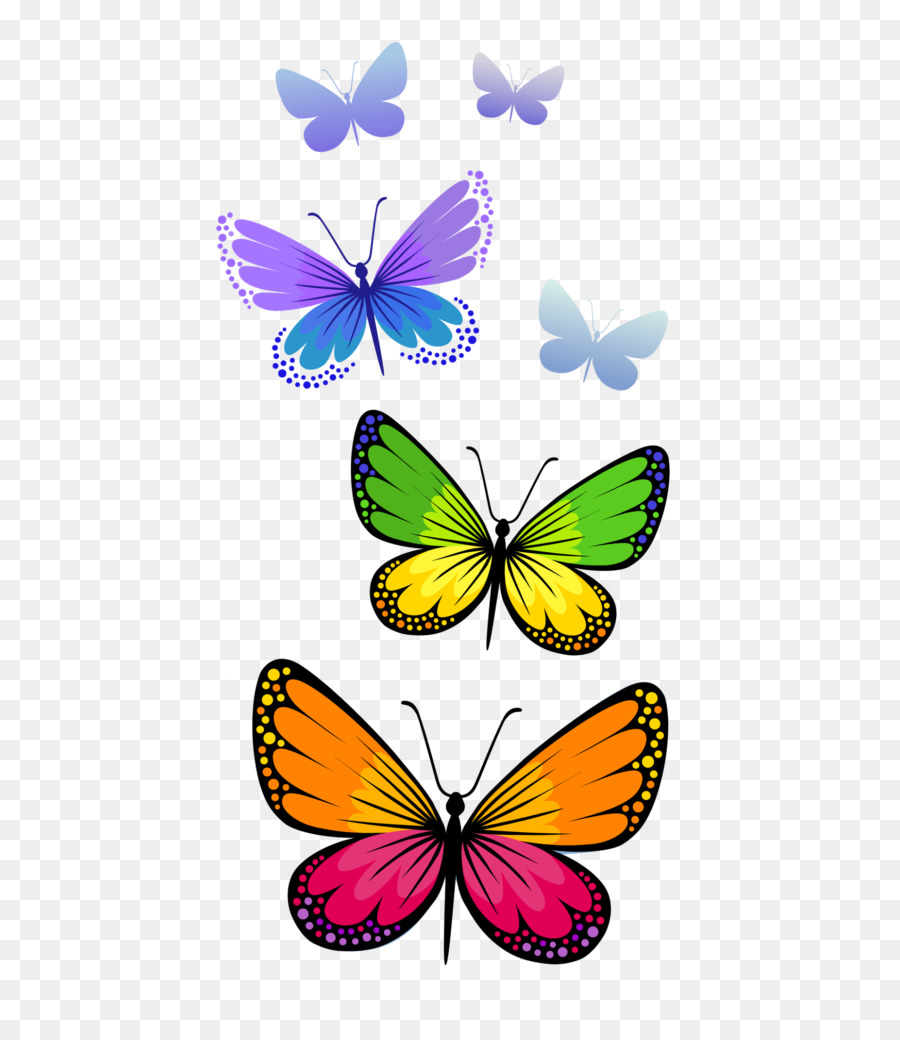 Flower line . Clipart butterfly transparent background