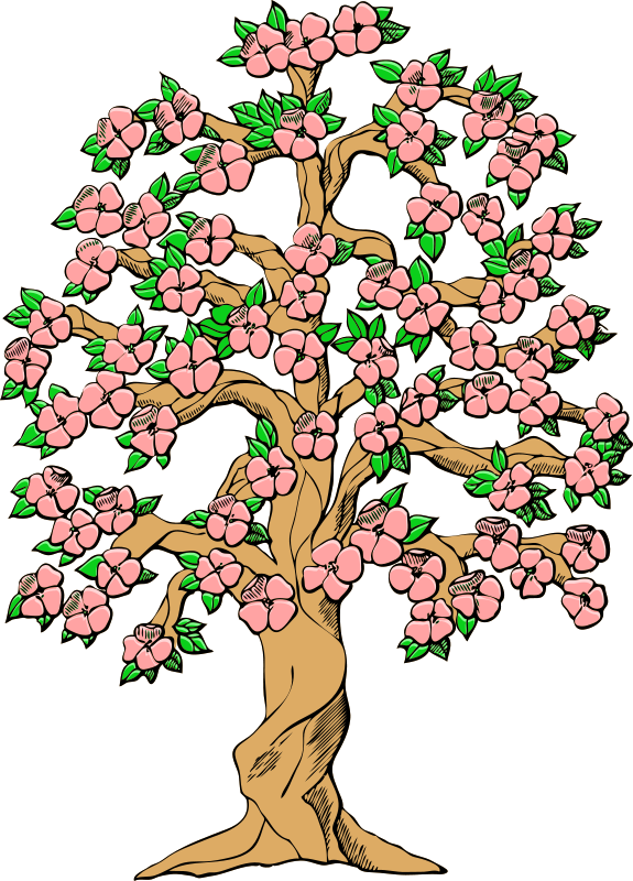 Spring flowers and clip. Clipart tree colour