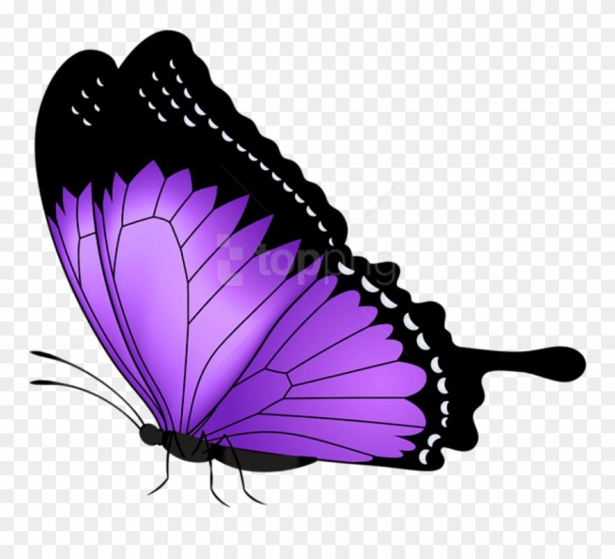 Clipart butterfly violet. Purple transparent png clip