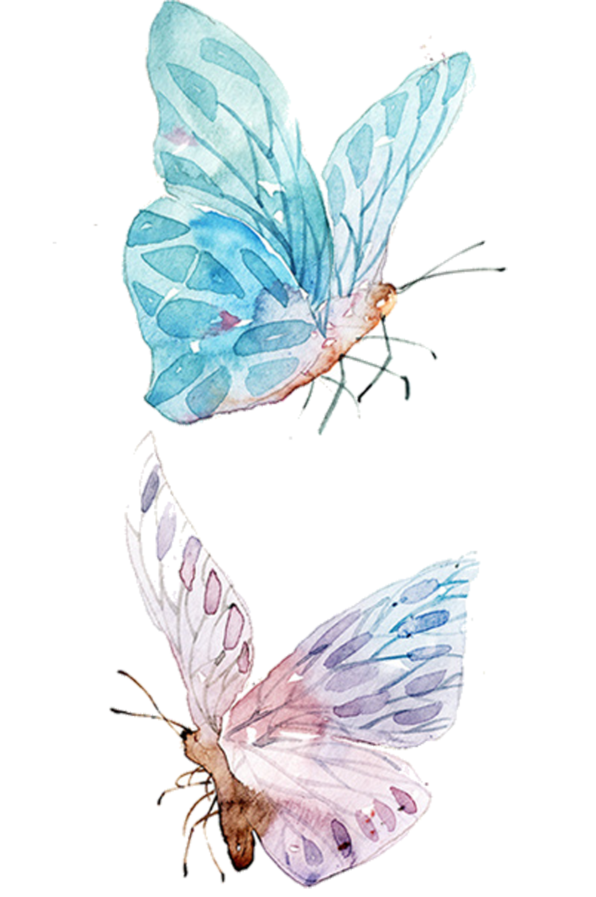 Feather clipart butterfly. Watercolor painting drawing clip