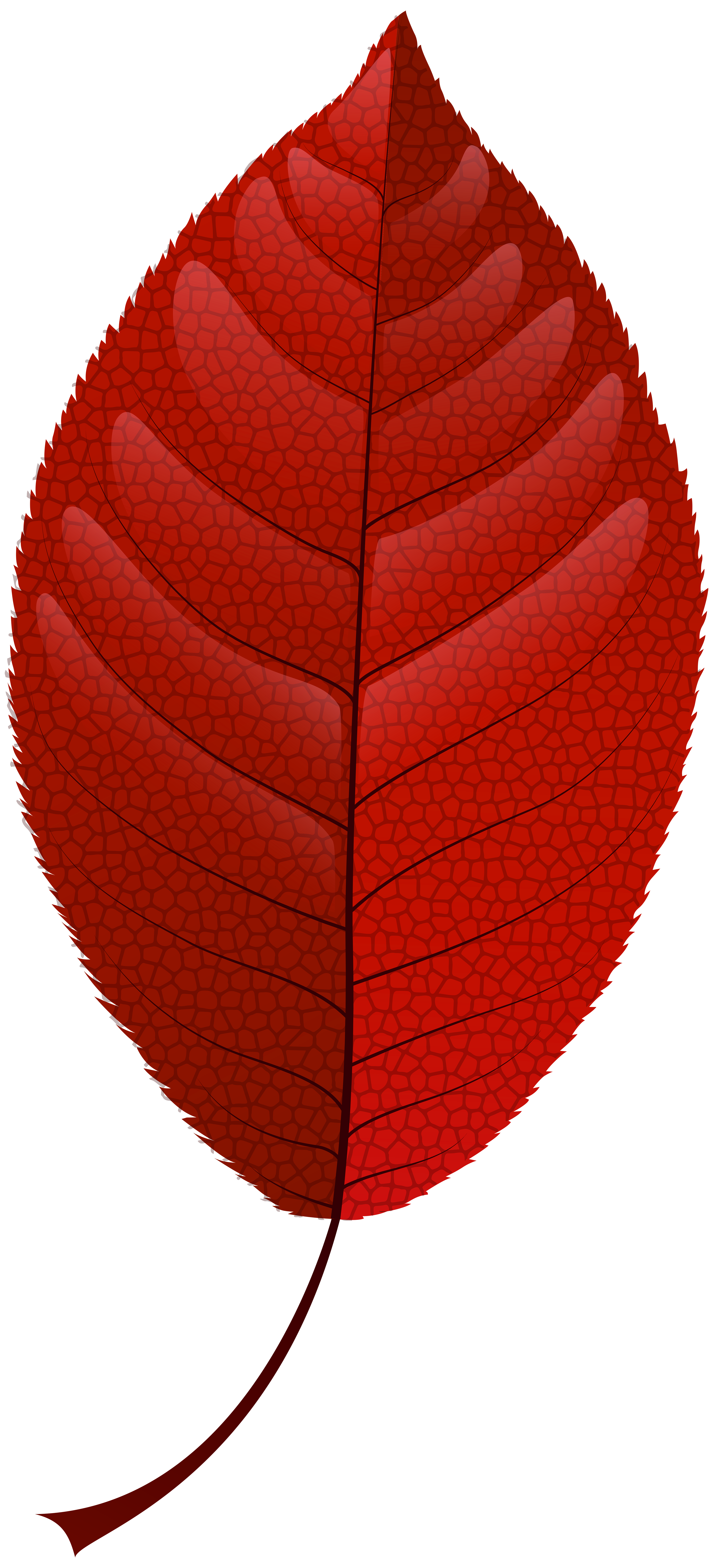 Fall leaves png vector. Clipart cake autumn