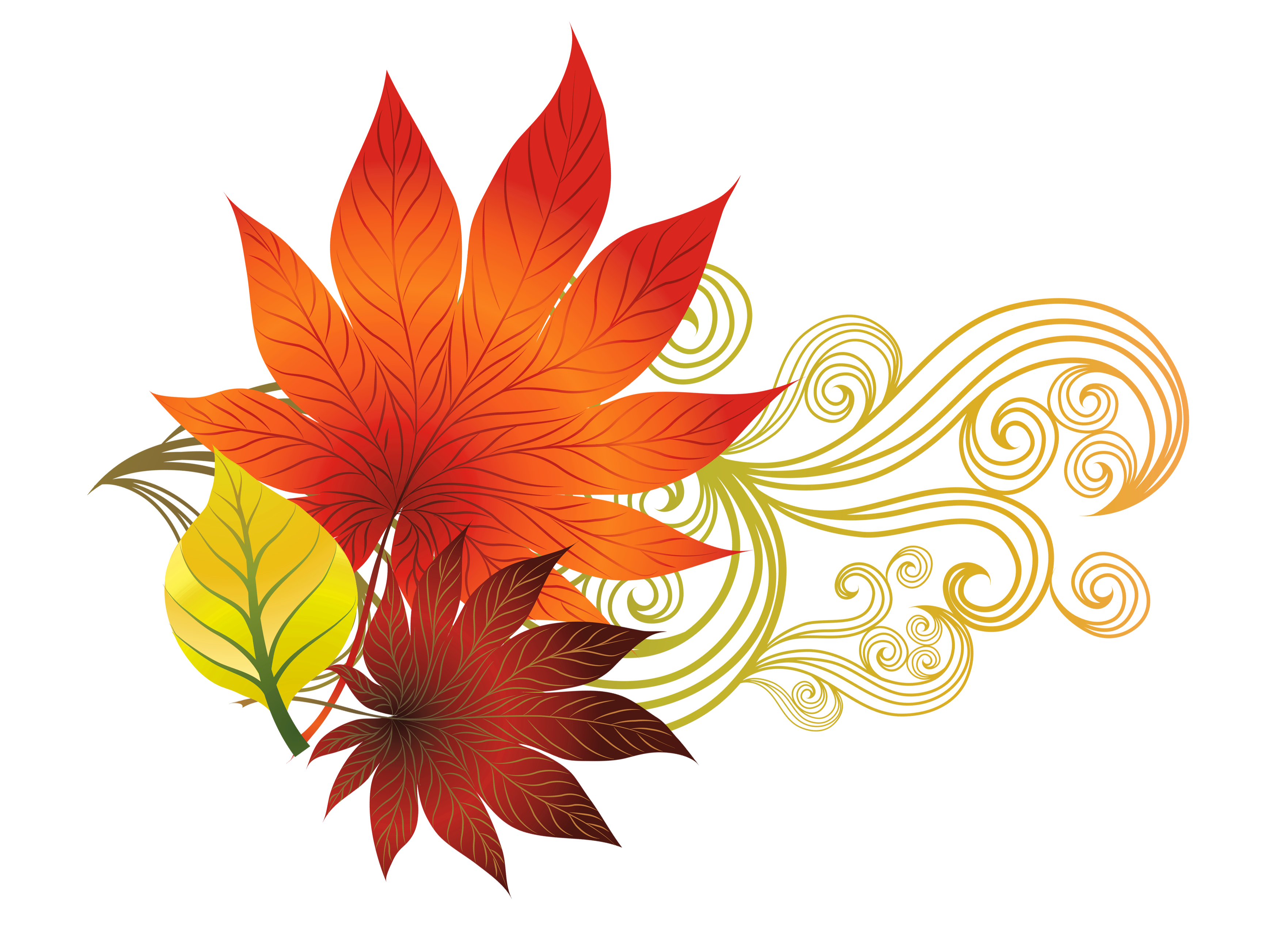 Fall leaves decoration png. Free clipart autumn
