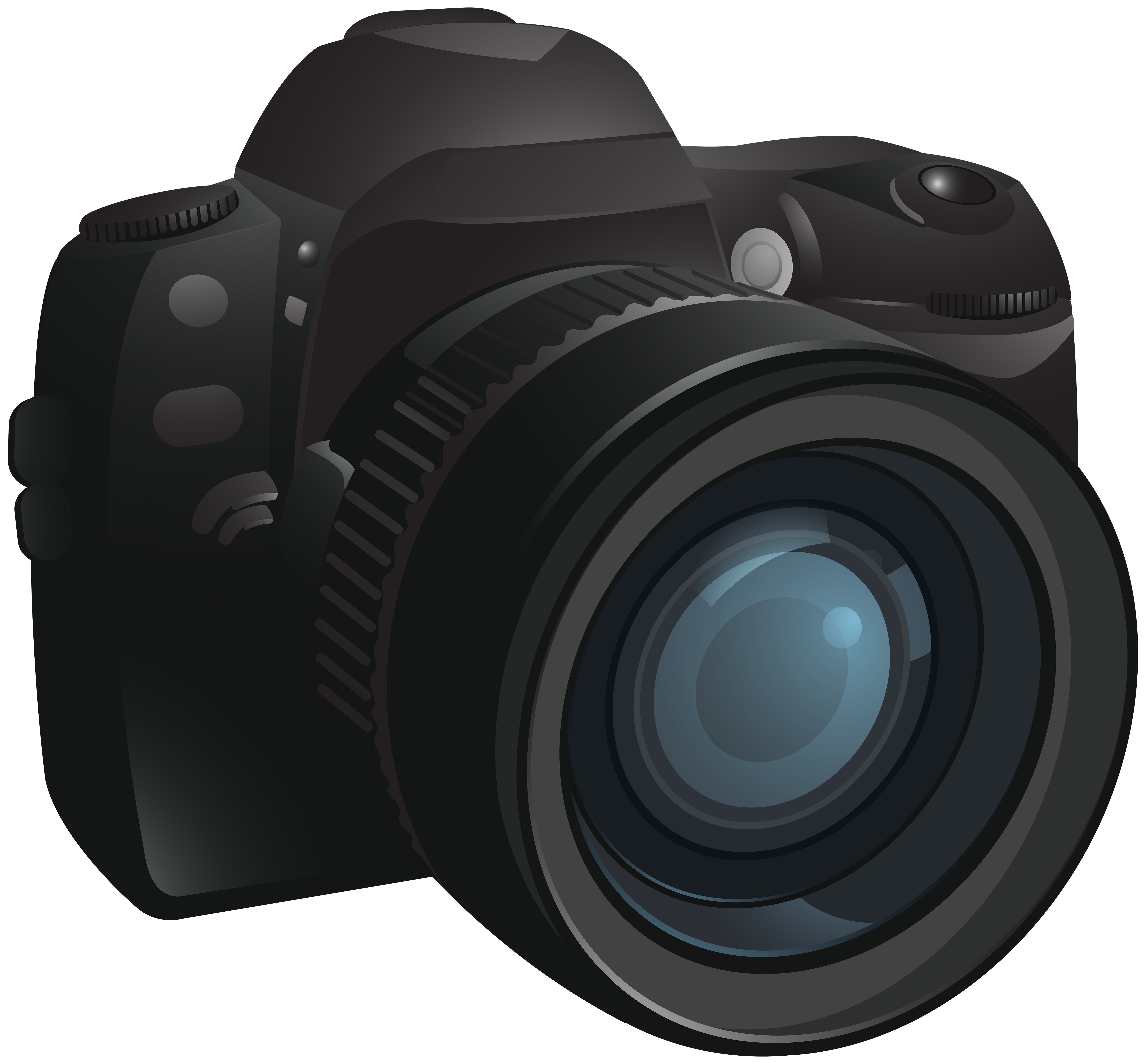 Clipart flowers camera. Transparent png image gallery