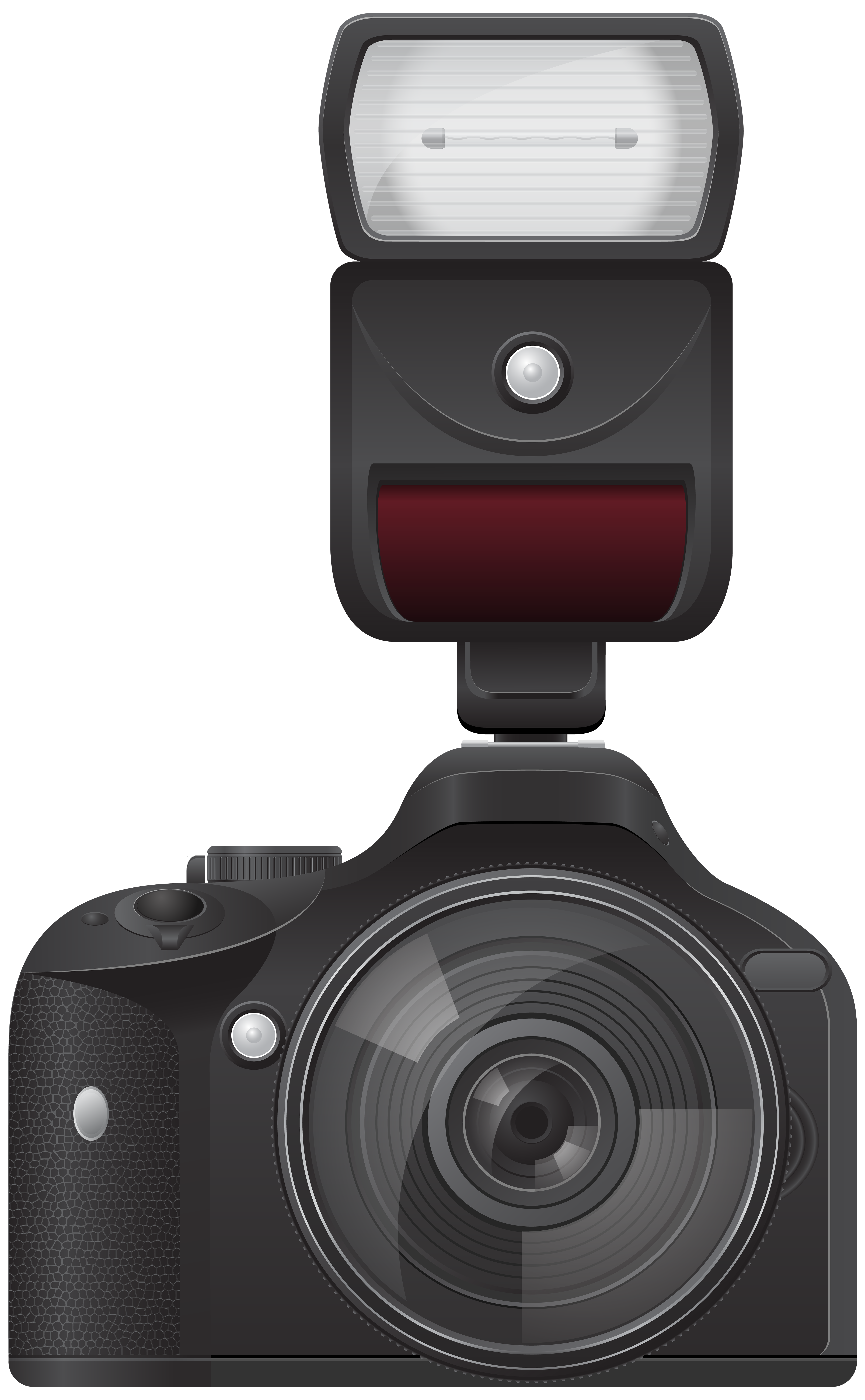 With flash transparent png. Flowers clipart camera