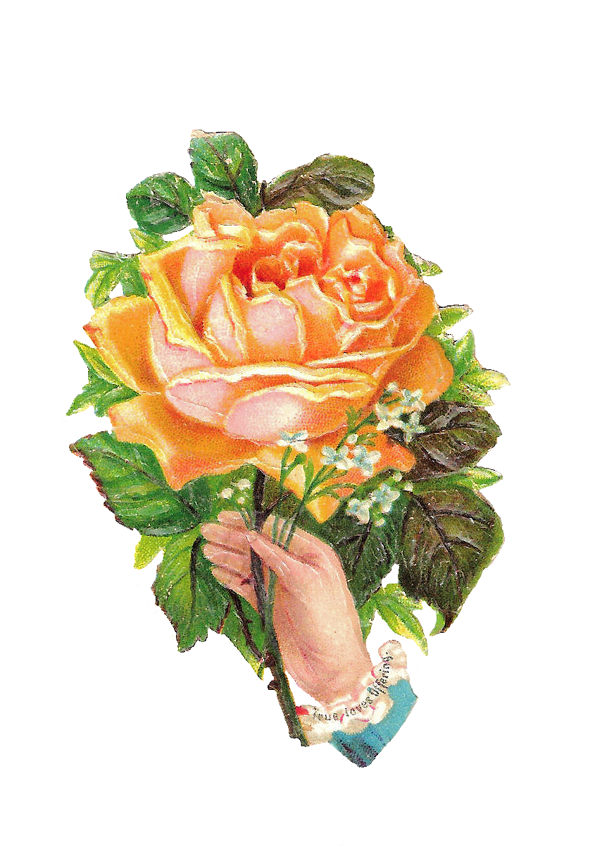 flower clip art victorian | Free Flower Graphic: Pink Yellow Rose ...