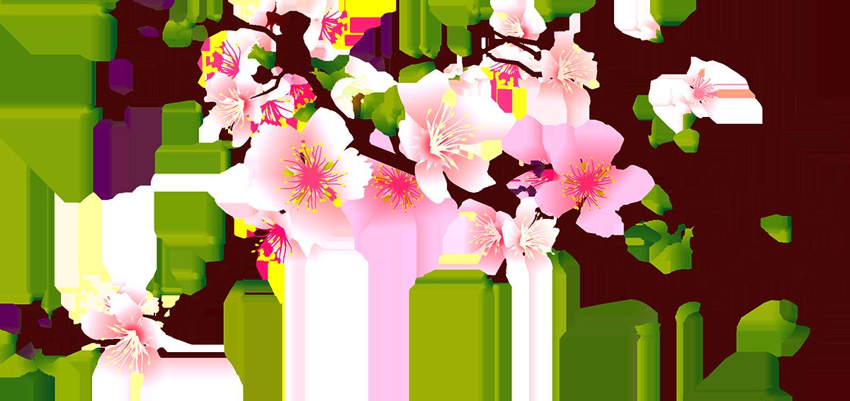 Cherry blossom peach clip. Decorative clipart branch