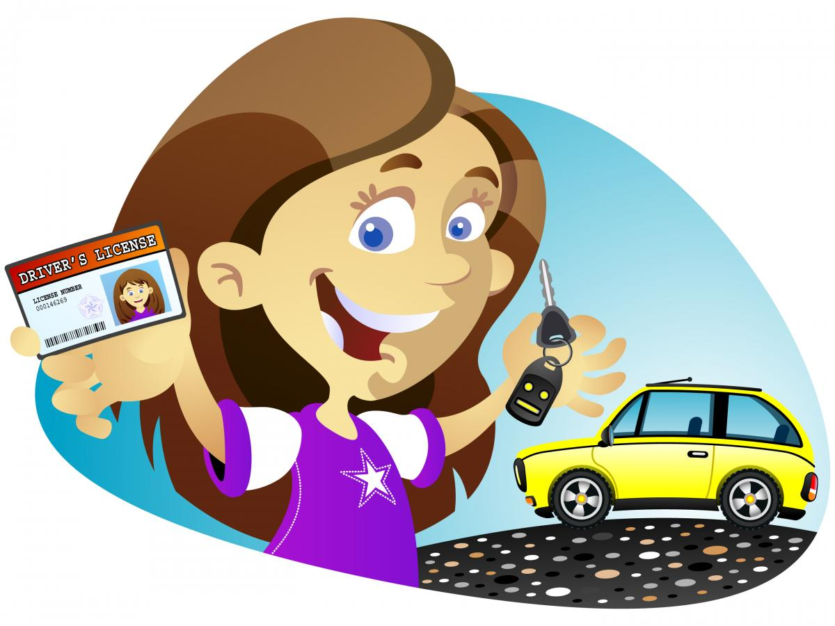 Free drivers test cliparts. Clipart cars license