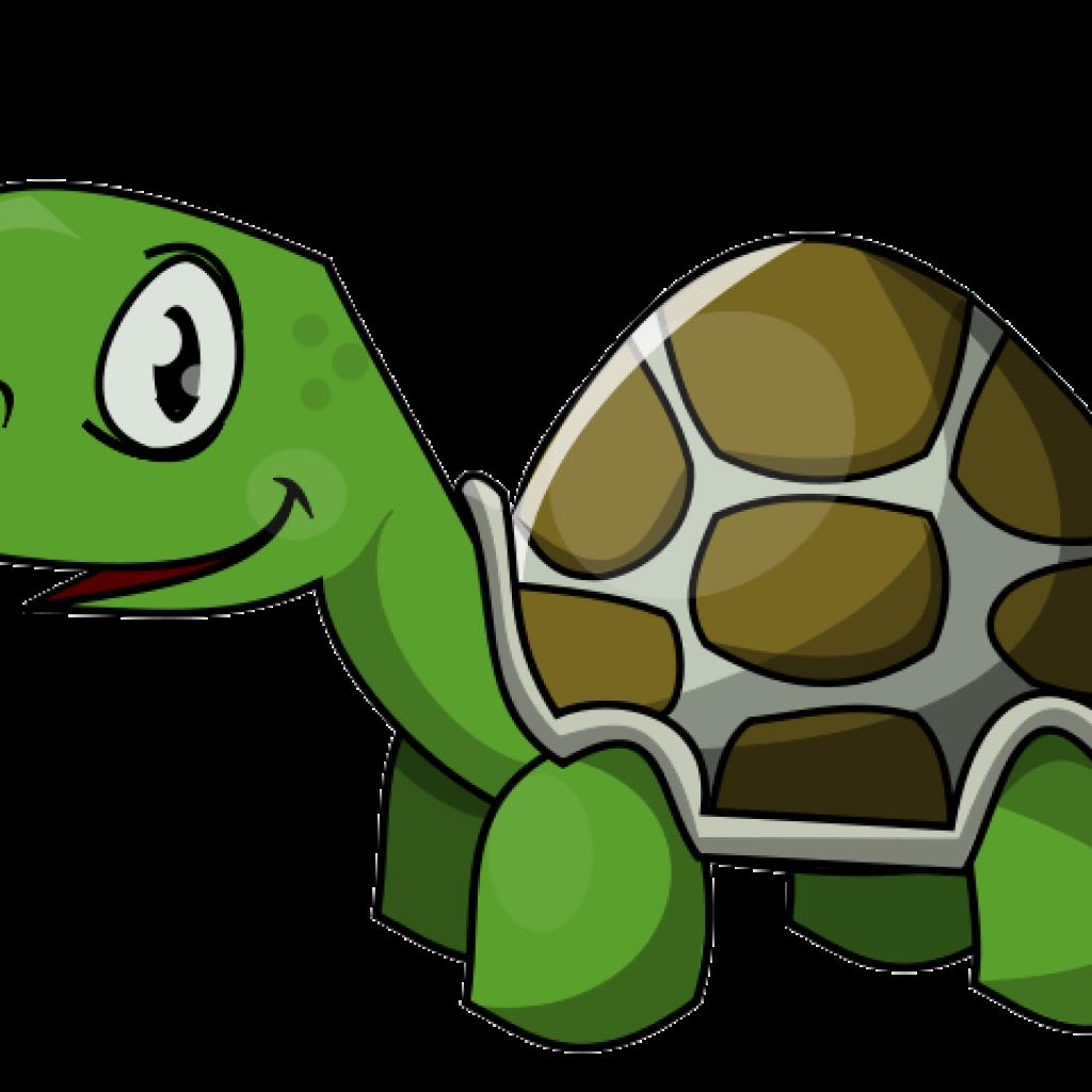 Turtle Clipart clipart hatenylo