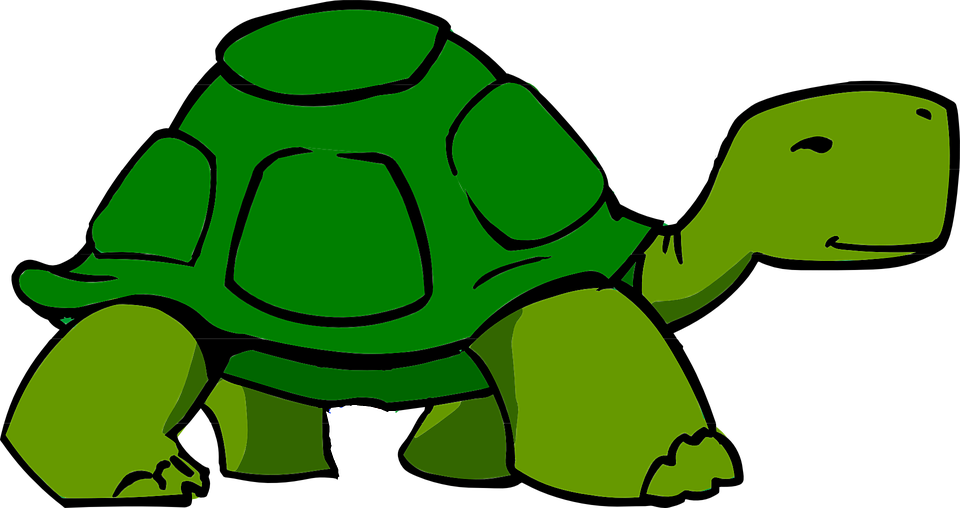Clipart turtle run. Picture of a cartoon