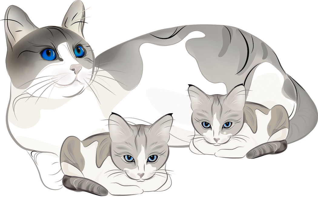 Nest clipart mother baby cat. And pencil in color