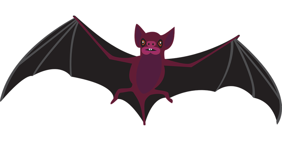 Eyes clipart bat. Scary frames illustrations hd
