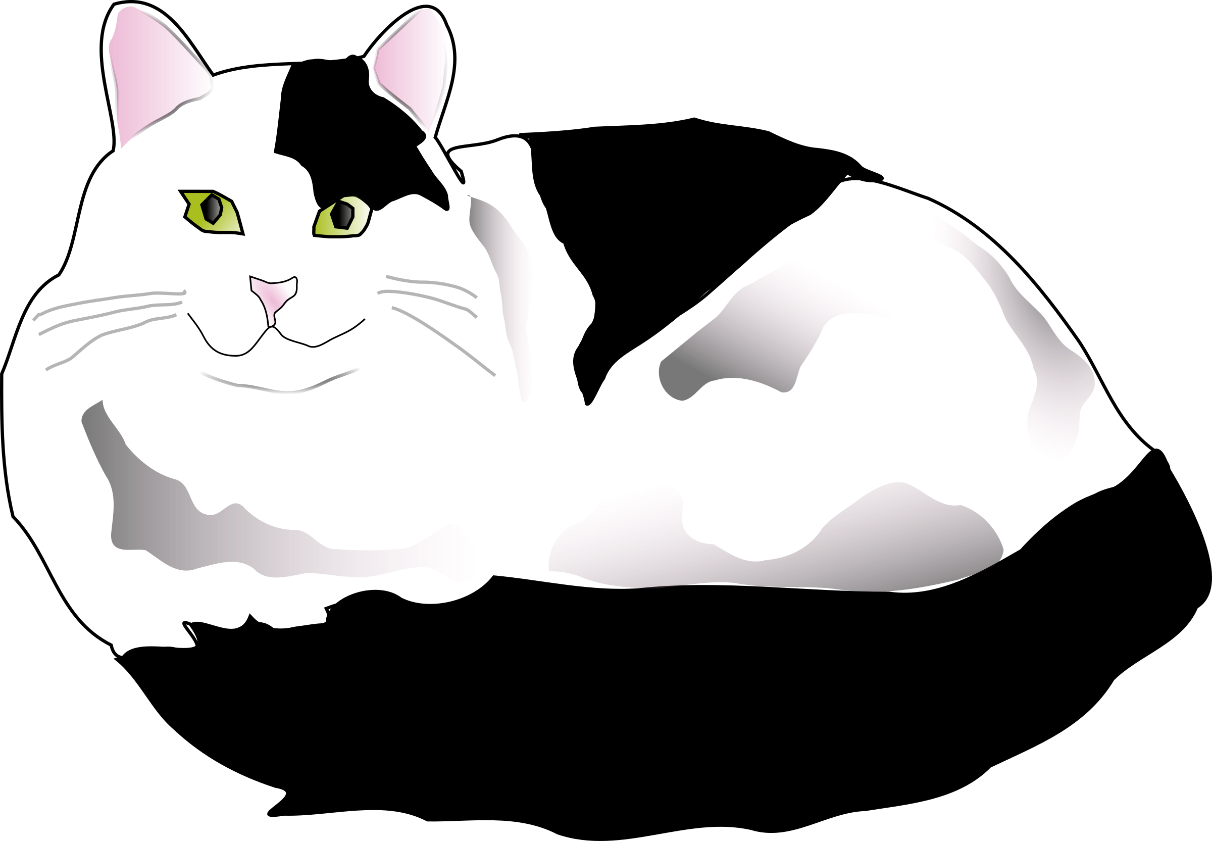 Clipart cat black and white. Fluffy big image png