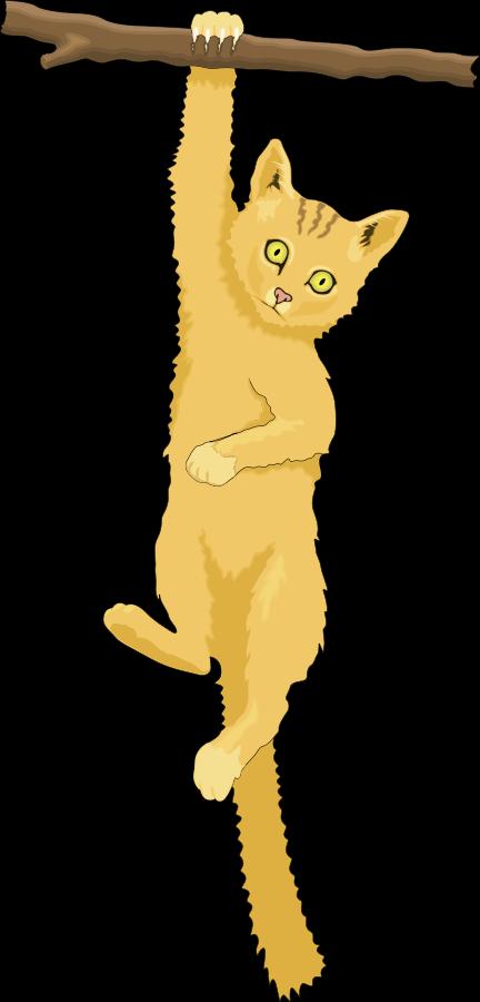 clipart cat climbing