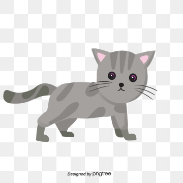 Kitten clipart house cat. Download free transparent png
