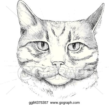 Clipart cat hand. Vector illustration drawn eps
