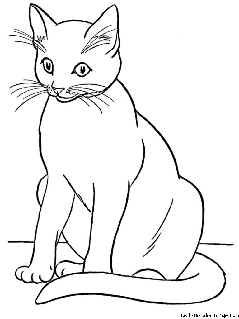 Cat black and white. Kittens clipart catblack