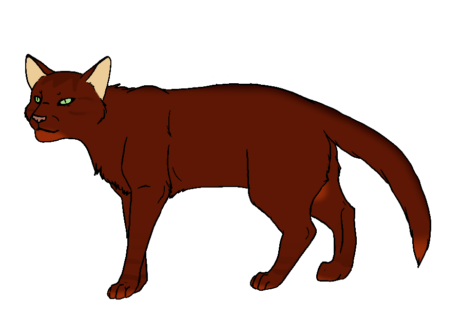 Clipart cat red. Warrior at getdrawings com