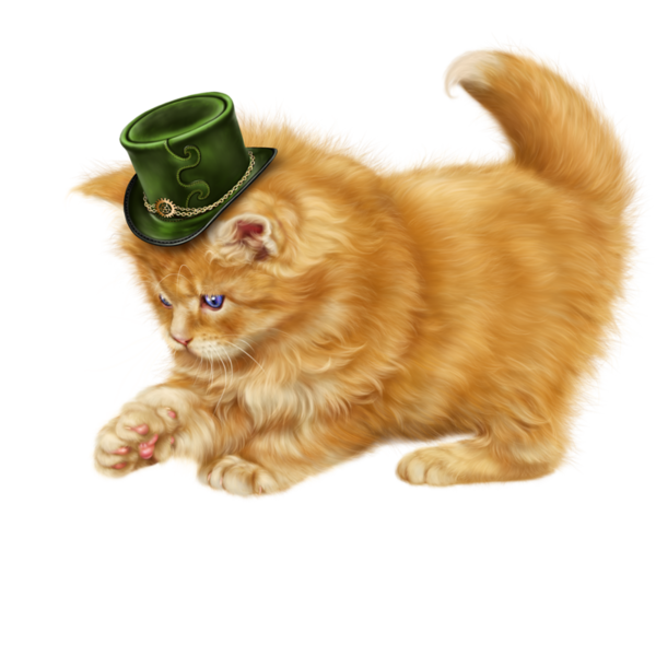 Kitty clipart st patrick's day. Chatons chats cat gato