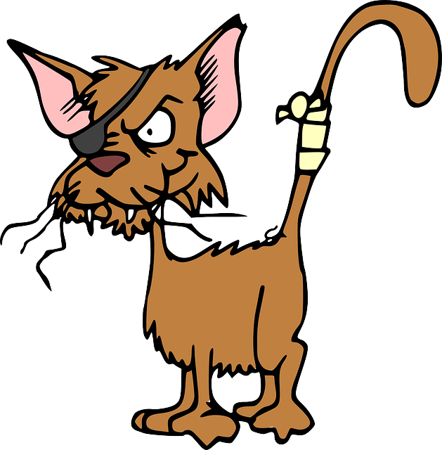 Free image on pixabay. Clipart cat supply