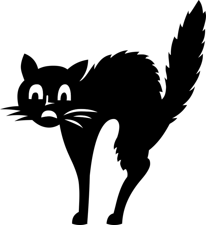 commonly used idioms. Clipart exercise cat