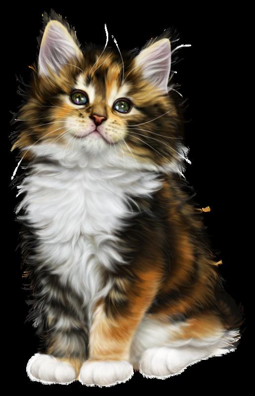 Kittens watercolor