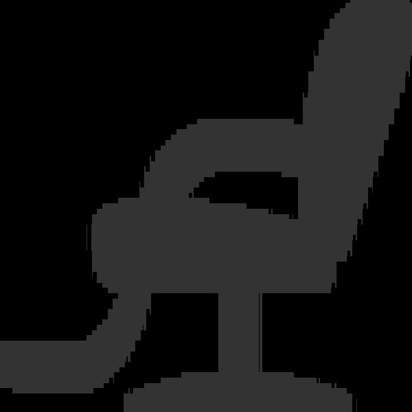 Hairdresser salon chair