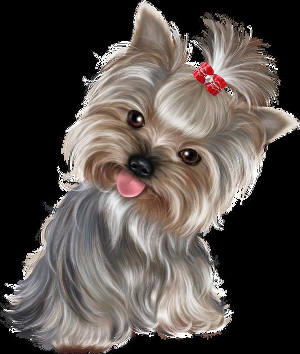 Clipart rainbow dog. Pin by elena vasileva