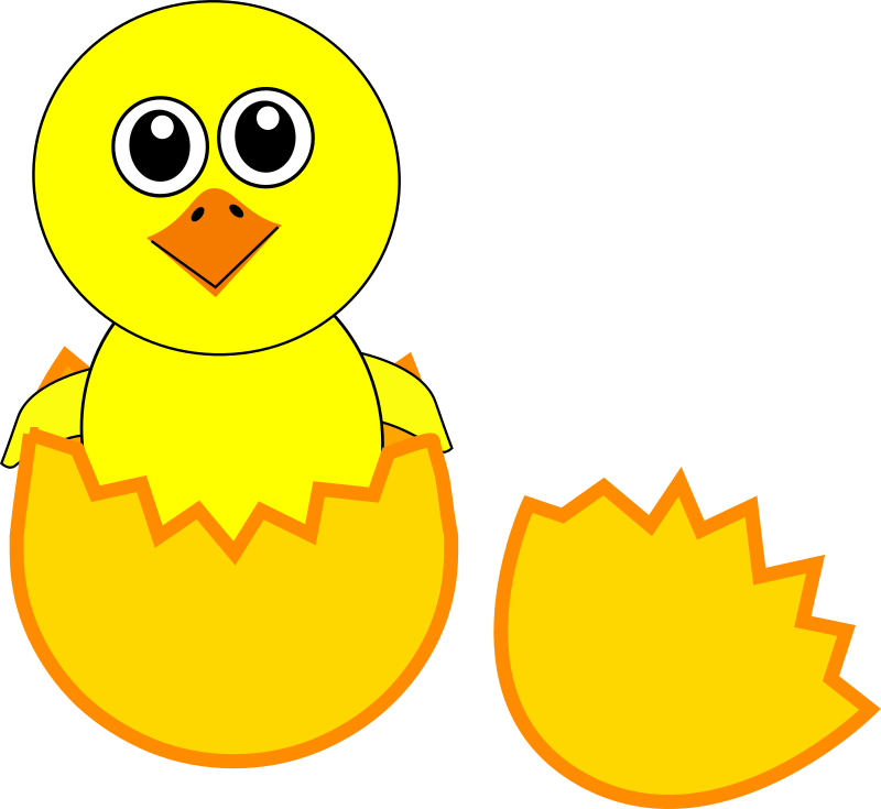 Coloring clipart chick. Chicken pencil and in