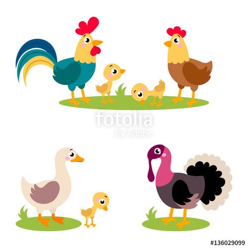 Set of popular colorful. Turkeys clipart goose