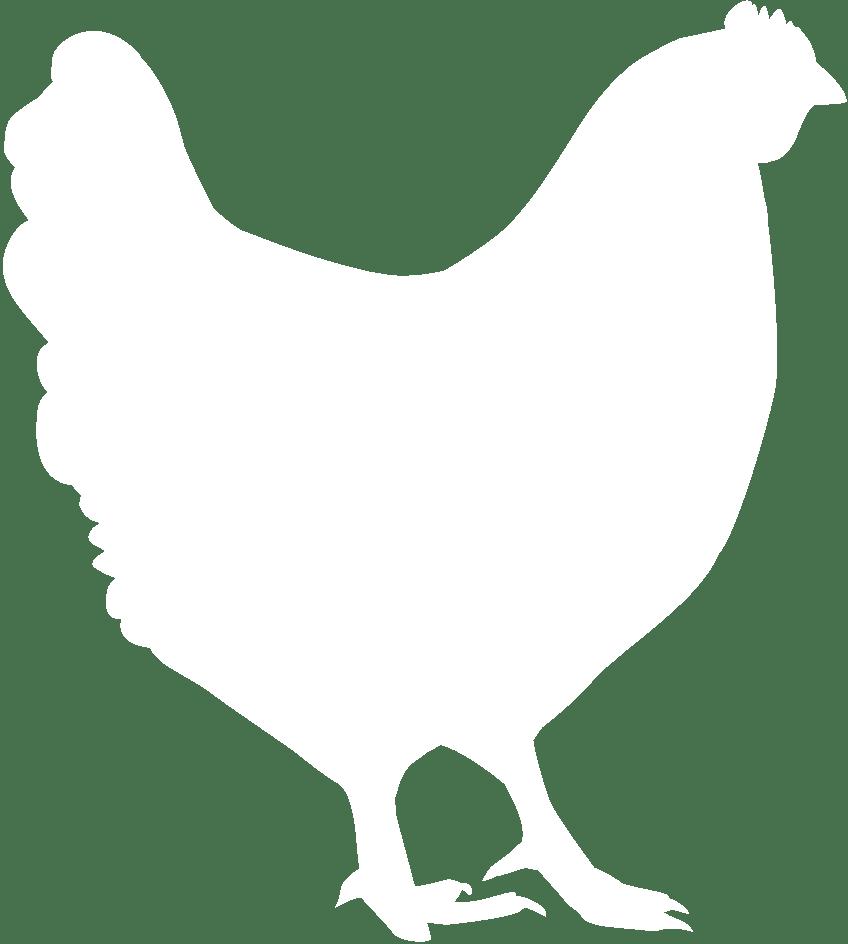 Happy egg co raised. Hen clipart chook