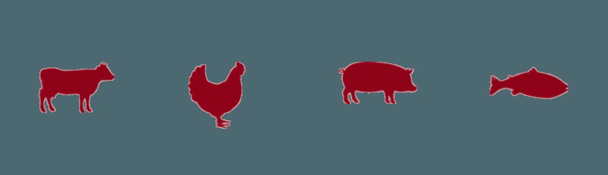 Home allen wholesale foods. Clipart pig chicken