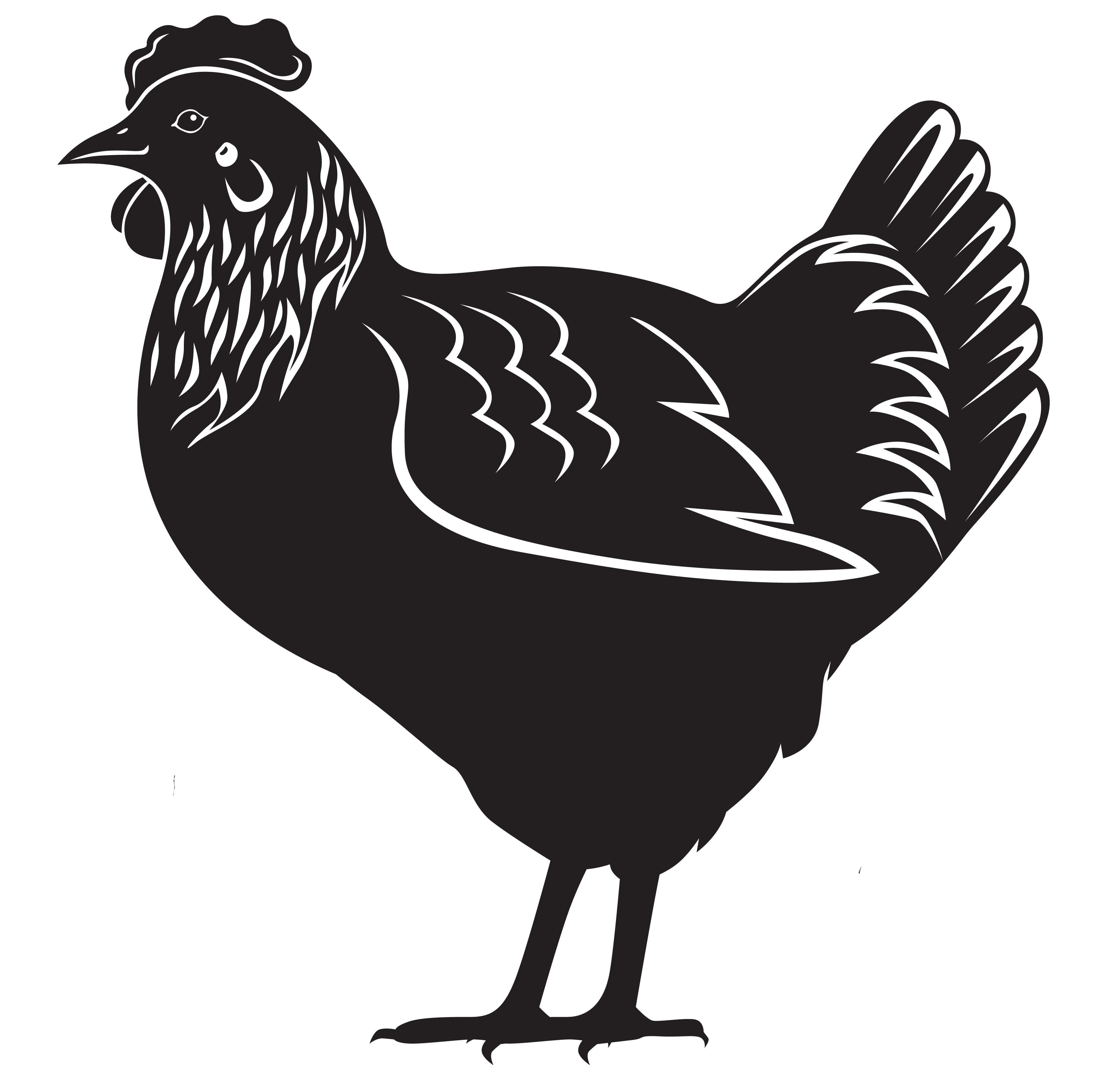 Earth first complete layer. Egg clipart poultry