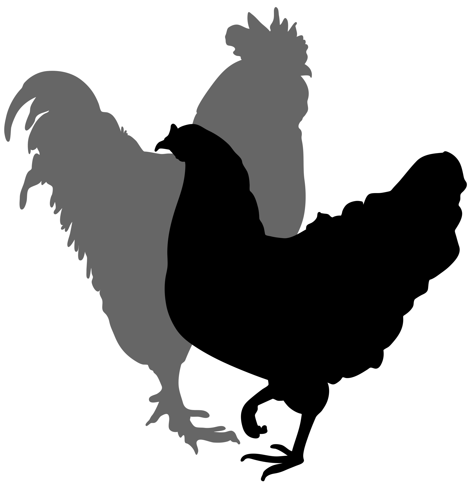 Nest clipart hen nest. Rooster silhouette images at