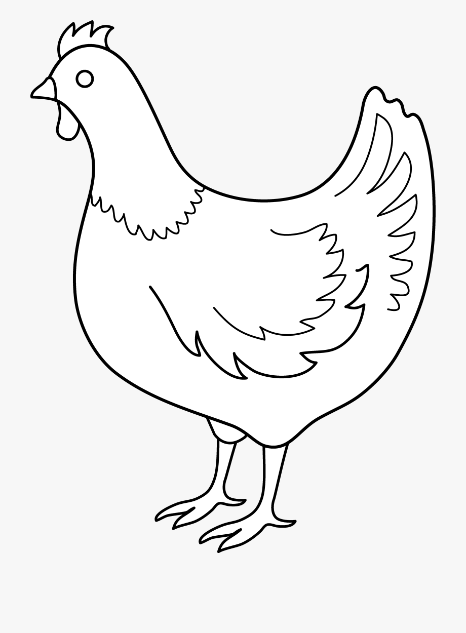 Hen clipart pencil sketch. Drawing of birds
