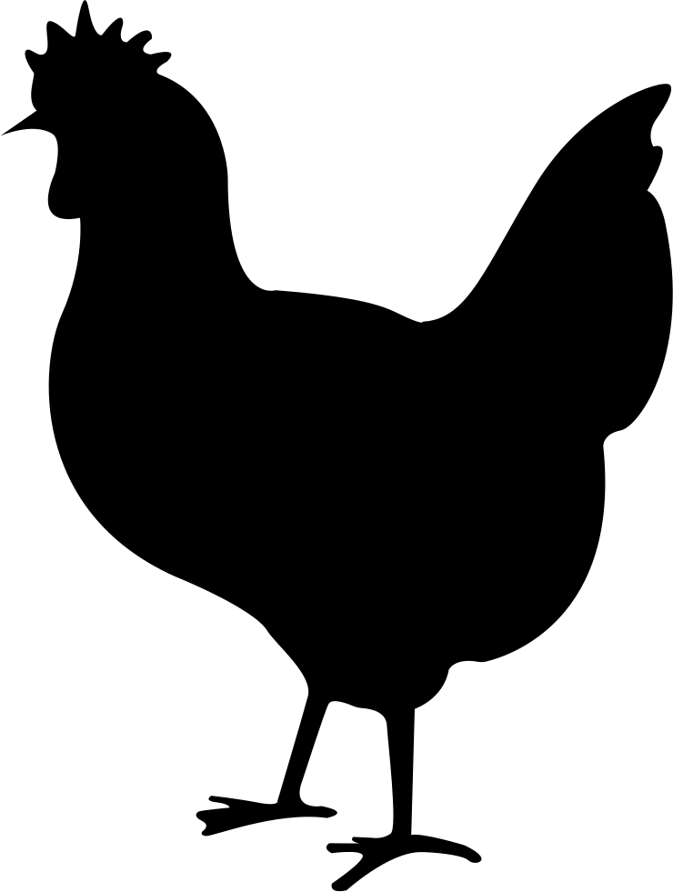 Clipart chicken svg. Png icon free download