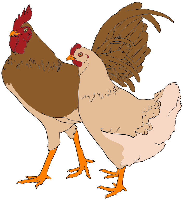 File rooster and hen. Clipart chicken svg